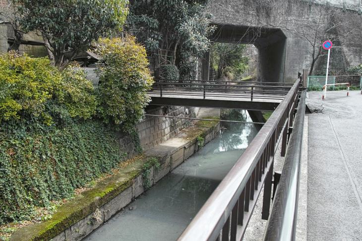 160320marukogawa-64.jpg