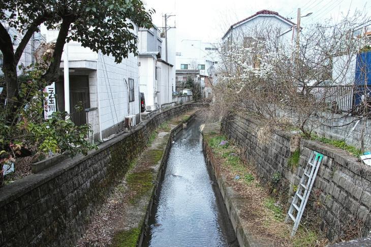 160320marukogawa-67.jpg
