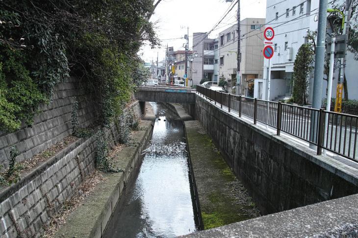 160320marukogawa-68.jpg