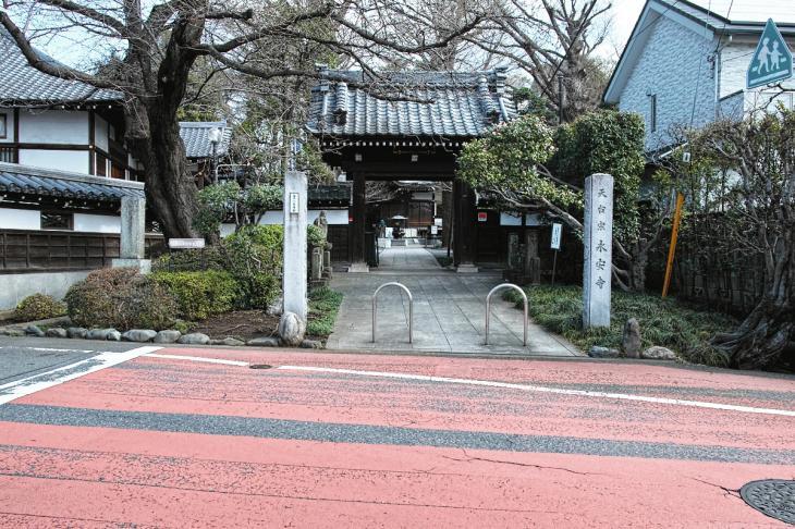160320marukogawa-9.jpg