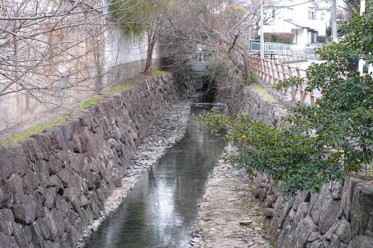 160326marukogawa-5.jpg