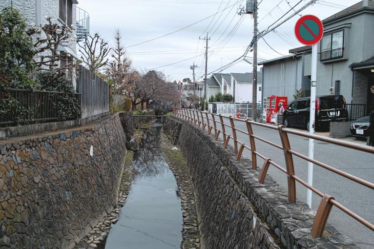 160326marukogawa-6.jpg