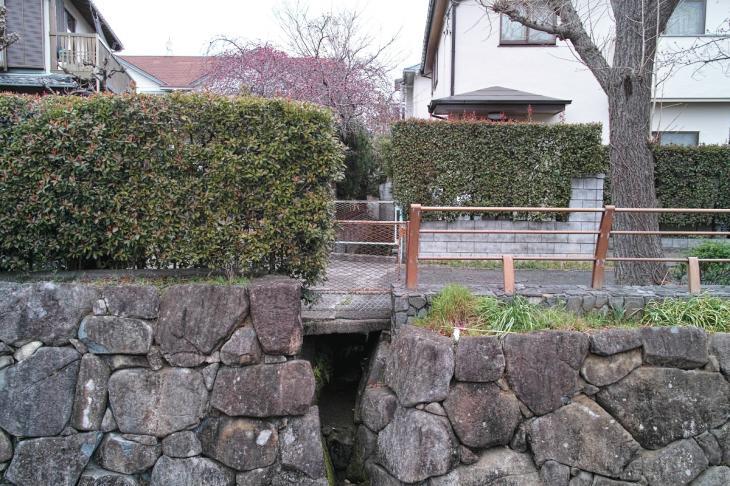 160326marukogawa-7.jpg