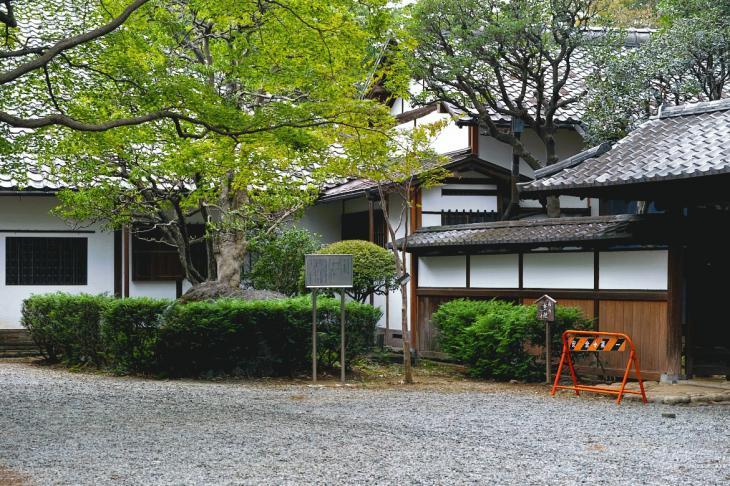 kosaka_tei6.jpg