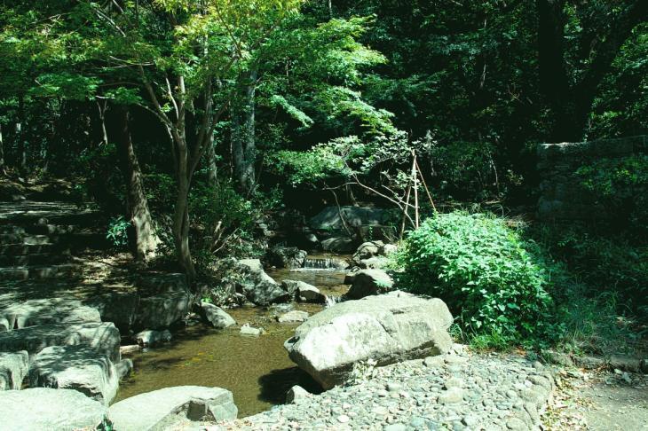 marukogawa1-9.jpg