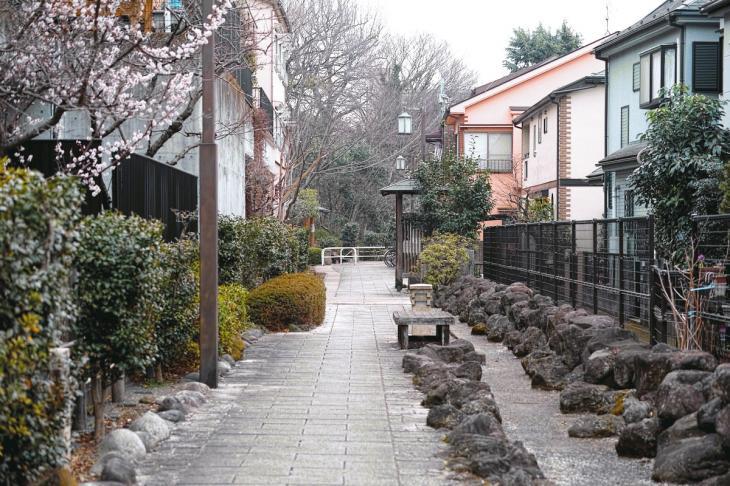 negawa-14.jpg