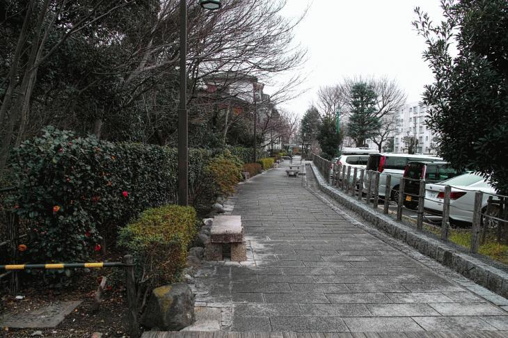 negawa-17.jpg