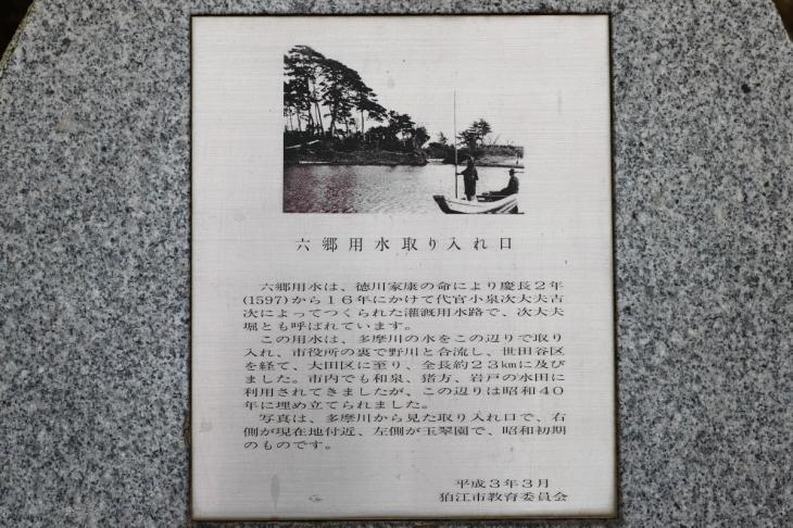 negawa-3.jpg