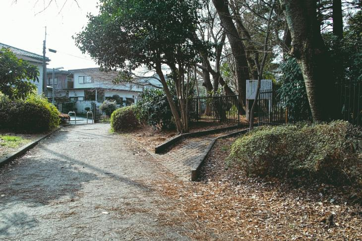 nogawaryokudoui-105.jpg