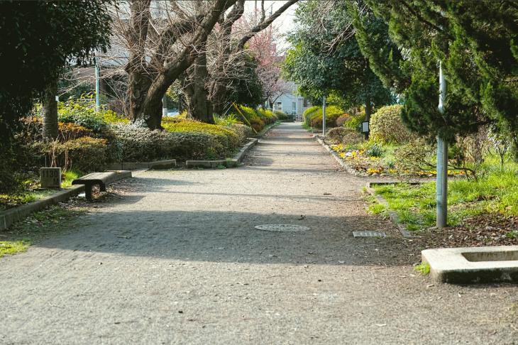 nogawaryokudoui-106.jpg