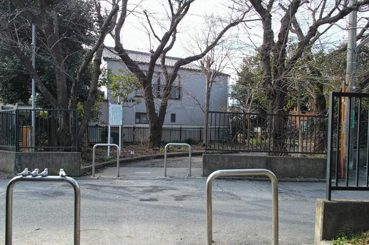 nogawaryokudoui-110.jpg