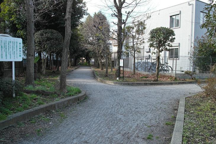 nogawaryokudoui-112.jpg
