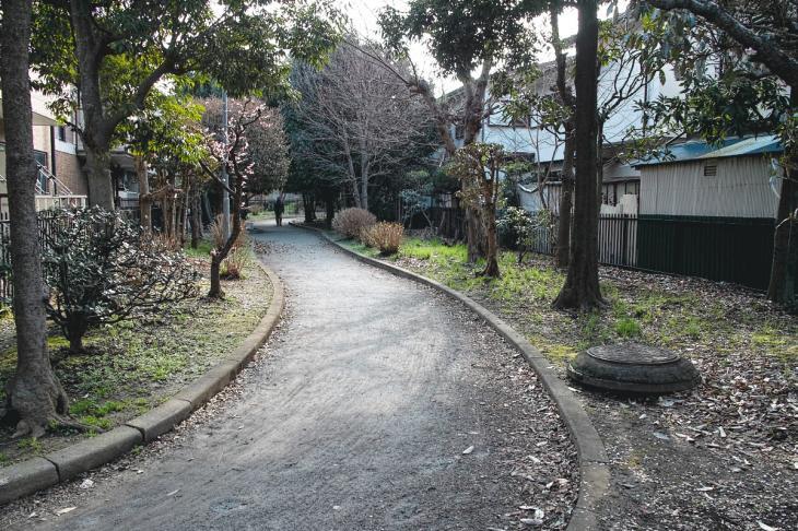 nogawaryokudoui-113.jpg
