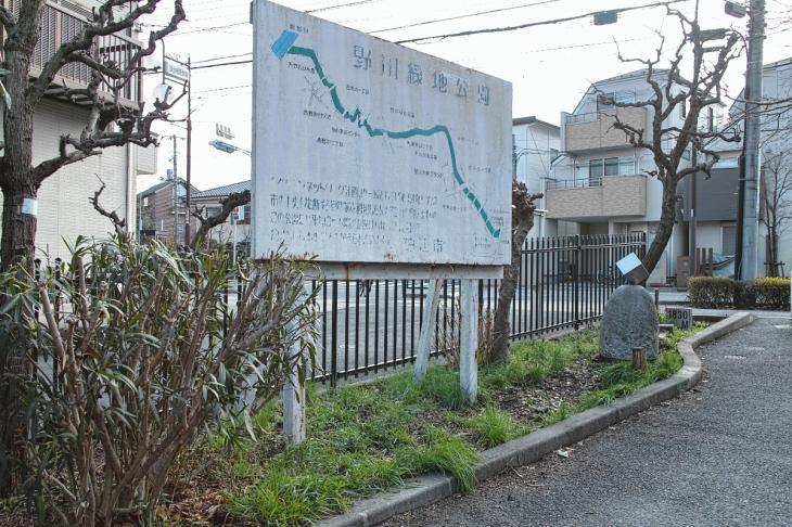 nogawaryokudoui-114.jpg