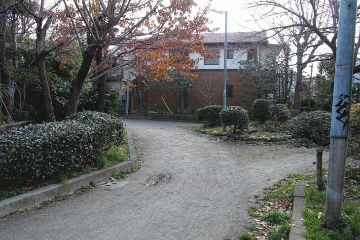nogawaryokudoui-116.jpg