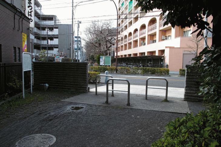 nogawaryokudoui-120.jpg