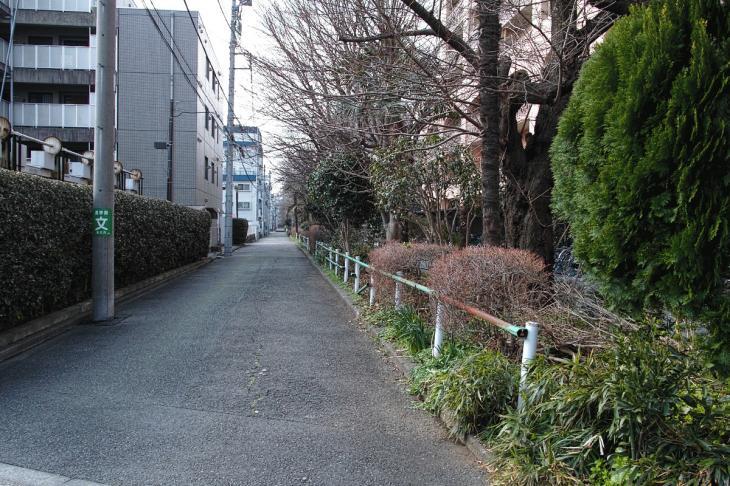 nogawaryokudoui-121.jpg