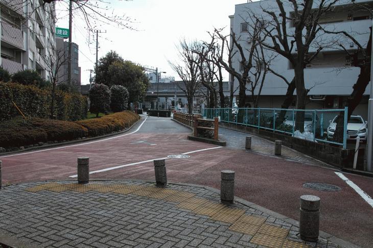 nogawaryokudoui-124.jpg