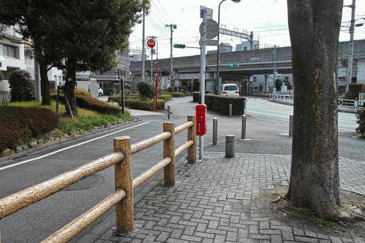 nogawaryokudoui-125.jpg