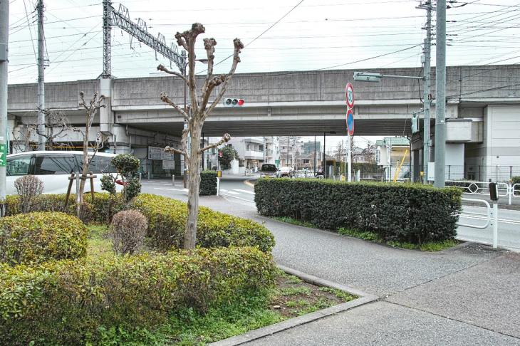 nogawaryokudoui-127.jpg