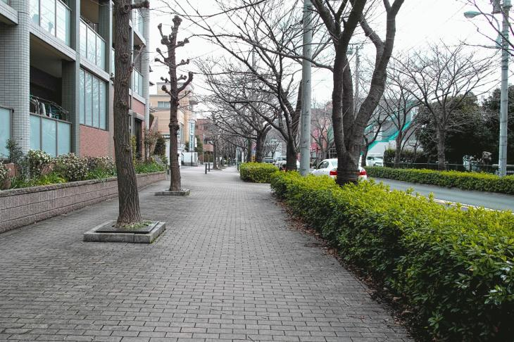 rokugoyosui-8.jpg