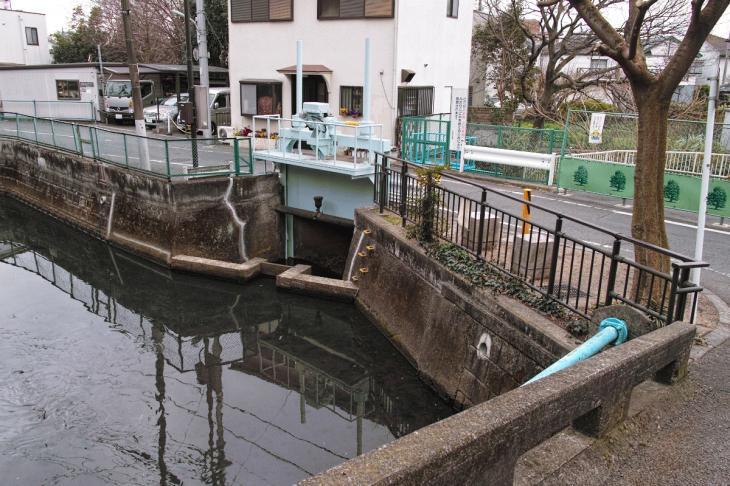 160326marukogawa-14.jpg