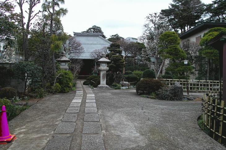 160326marukogawa-18.jpg