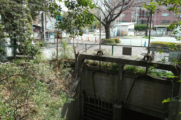 160326marukogawa-57.jpg