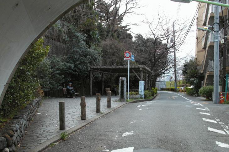 160326marukogawa-63.jpg