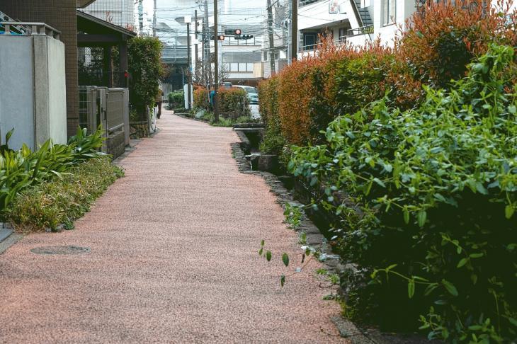 160409rokugoyosui-11.jpg