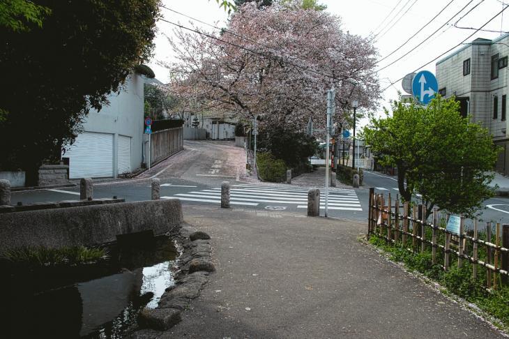 160409rokugoyosui-20.jpg