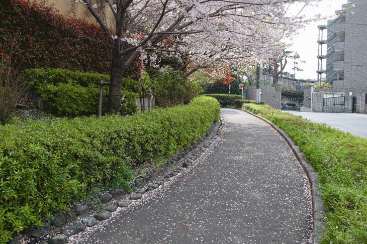 160409rokugoyosui-23.jpg