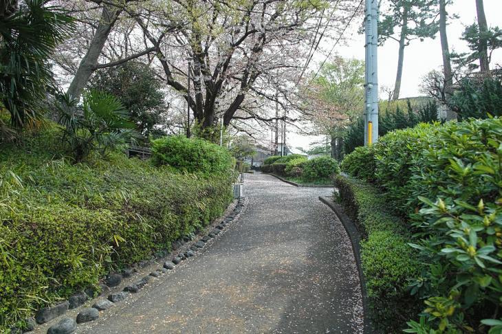 160409rokugoyosui-24.jpg