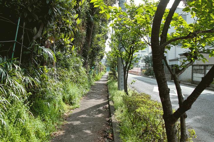 160409rokugoyosui-38.jpg