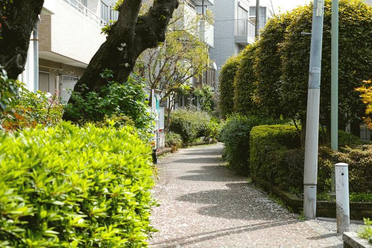 160409rokugoyosui-63.jpg