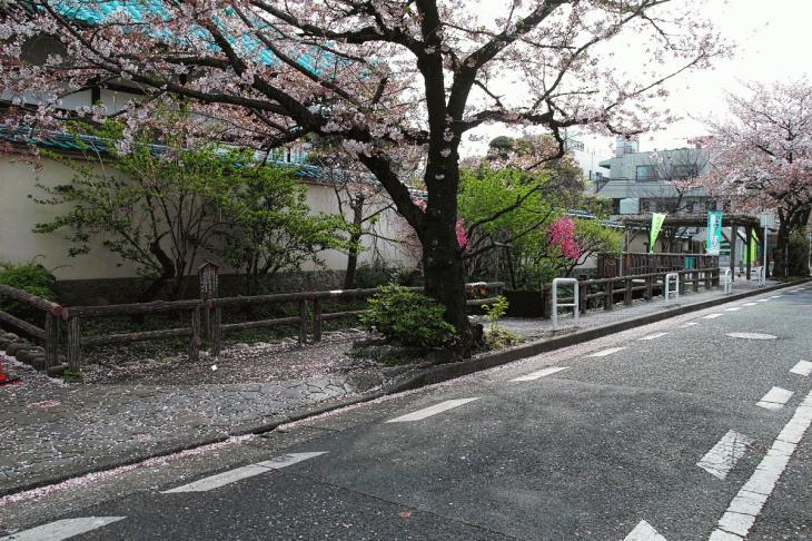 160409rokugoyosui-7.jpg