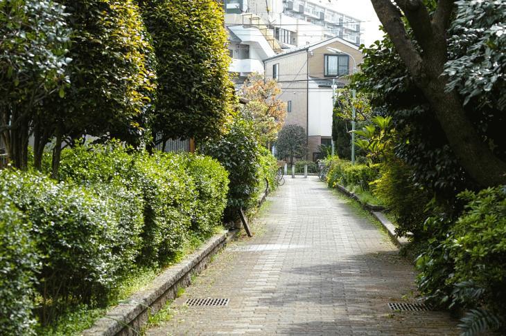 160409rokugoyosui-73.jpg
