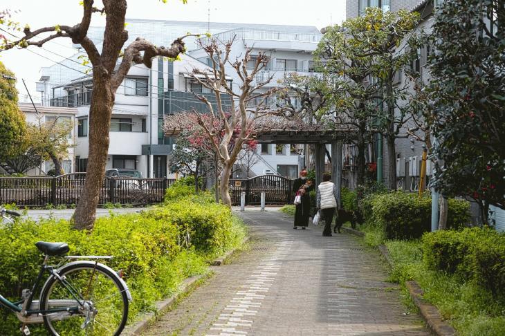 160409rokugoyosui-74.jpg