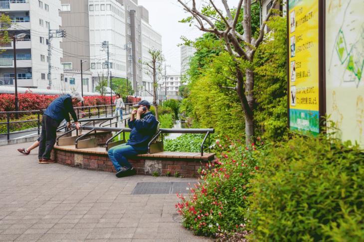 megurogawa_flower-45.jpg
