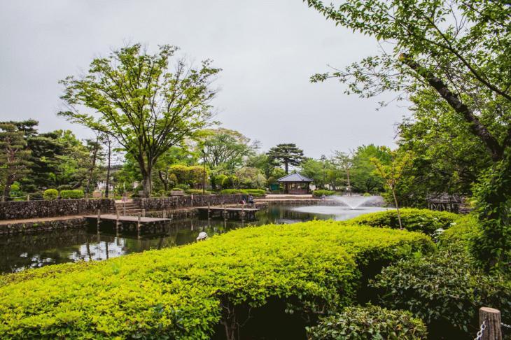 zanborigawa-10.jpg