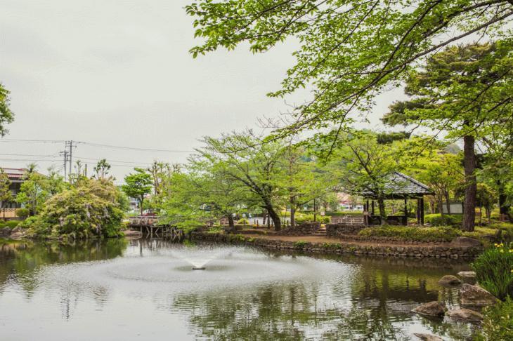 zanborigawa-13.jpg