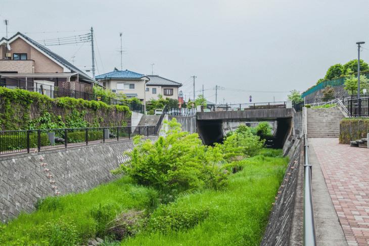 zanborigawa-19.jpg
