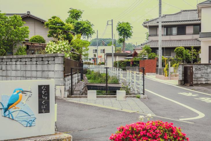 zanborigawa-21.jpg