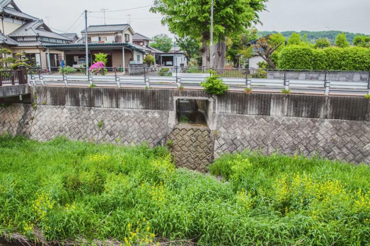 zanborigawa-26.jpg
