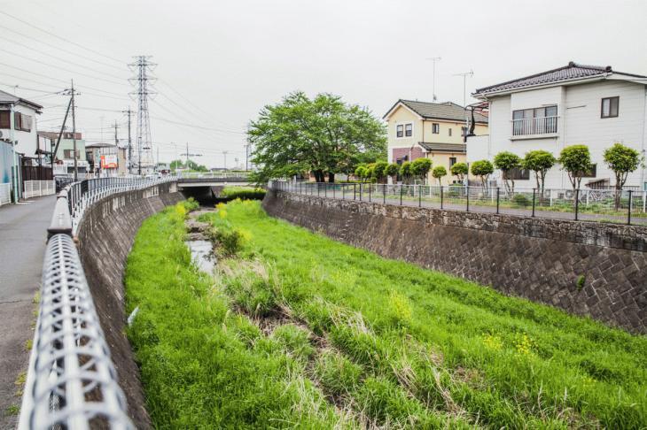 zanborigawa-39.jpg