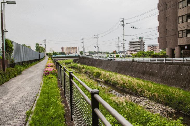 zanborigawa-56.jpg