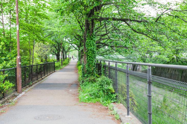 zanborigawa-60.jpg