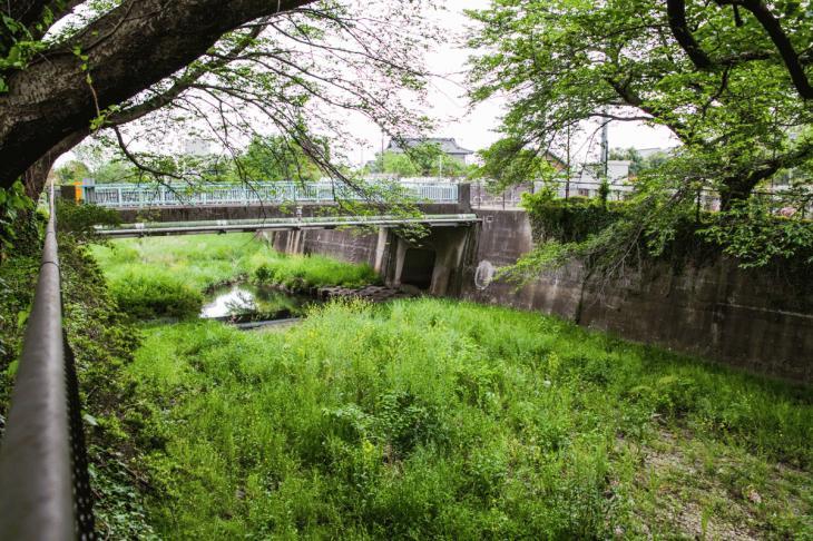 zanborigawa-61.jpg