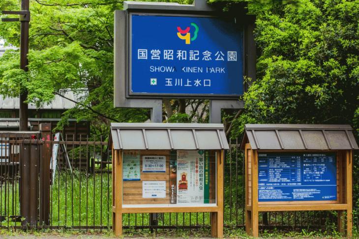 zanborigawa2-12.jpg