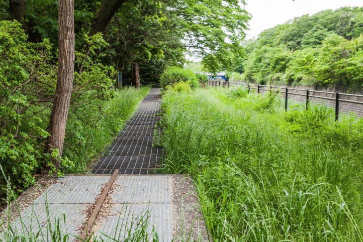 zanborigawa2-18.jpg
